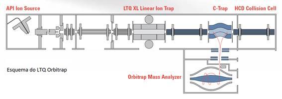 Esquema LTQ Orbitrap XL