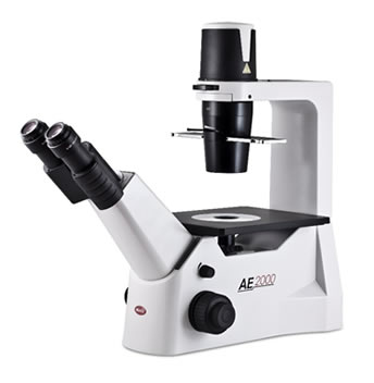 microscópio invertido para rotina